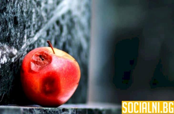 Ябълката изгнива