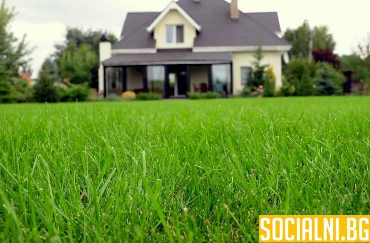 Зеленият двор е душата на дома ни